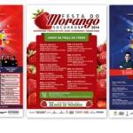 Agosto cheio de atrações na cidade de Socorro (SP) que completa 185 anos. Festa da Padroeira e Festa do Morango começam neste sábado, dia 09